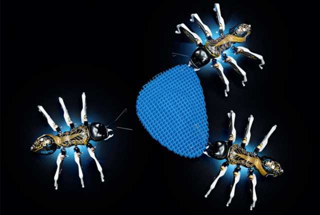 1428089248_ants1