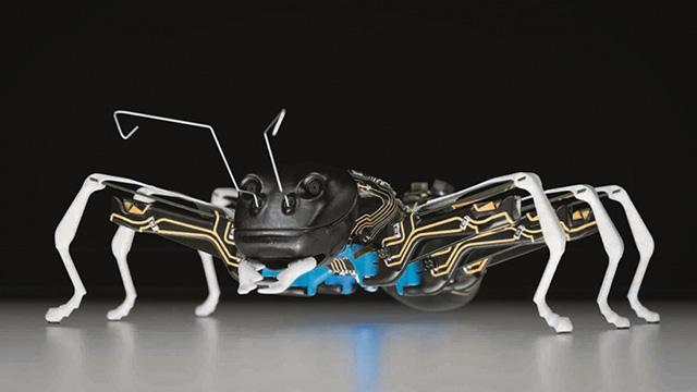 20150403192637-festo-bionic-ant